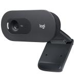Logitech C505 HD Webbkamera